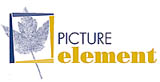 Picture Element Logo