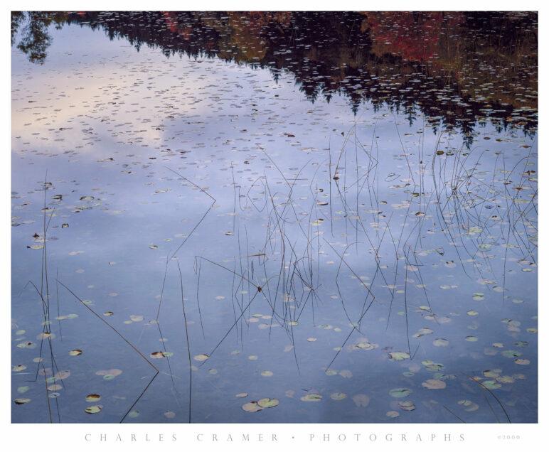 Long Pond at Dawn, Acadia, Maine