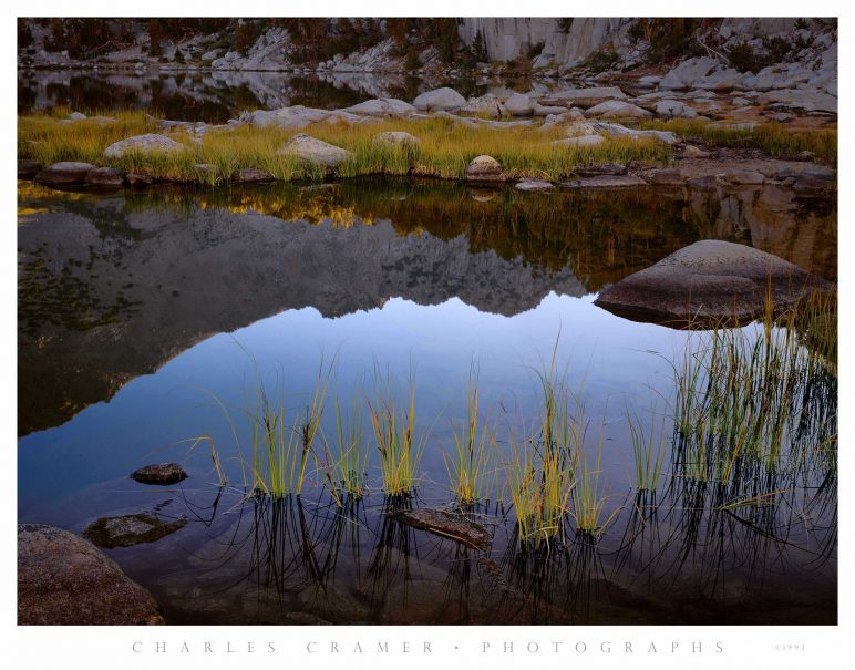 Grasses, Sunrise, Kearsage Lake, Kings Canyon