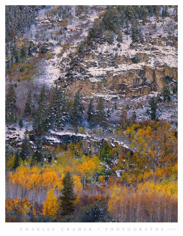 Autumn Snow, near South Lake, Eastern Sierra
