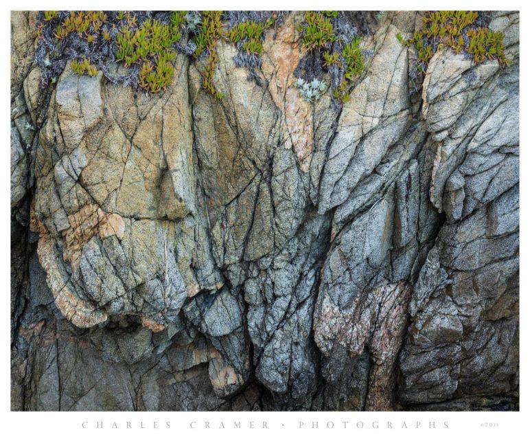 Iceplant, Rocks, Point Lobos