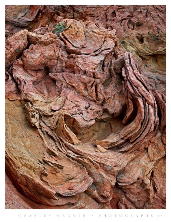 Curved Sandstone, Paria Wilderness, Utah