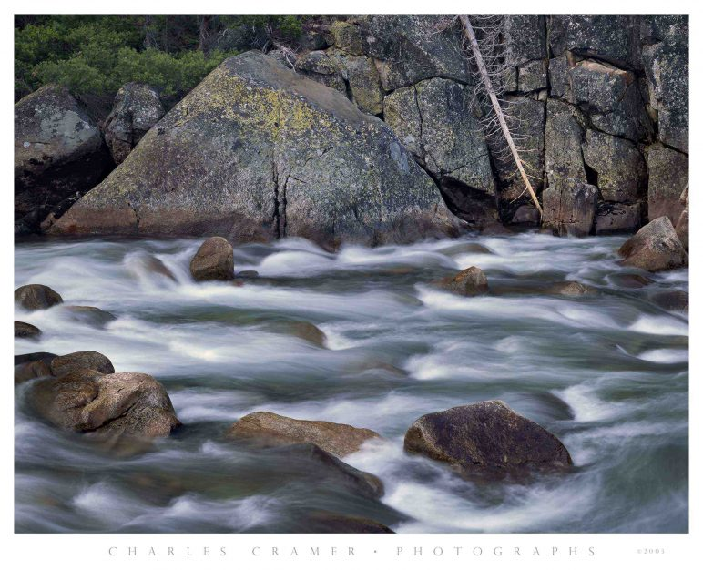Tuolumne River, Fallen Tree, Yosemite