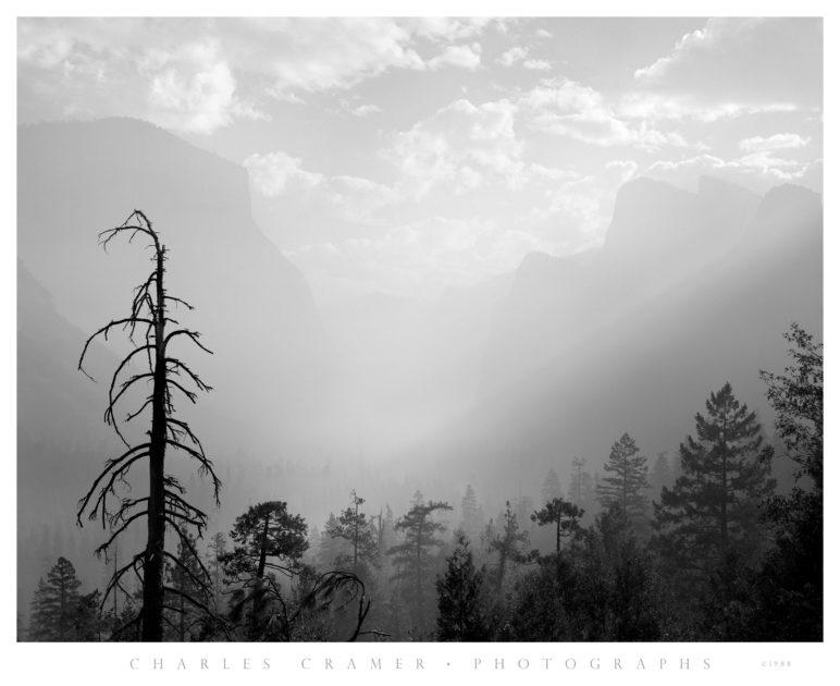Morning Mist, Valley View, Yosemite