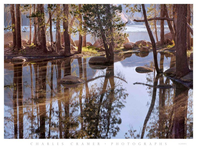 Spring Pool, First Light, Tenaya Lake, Yosemite