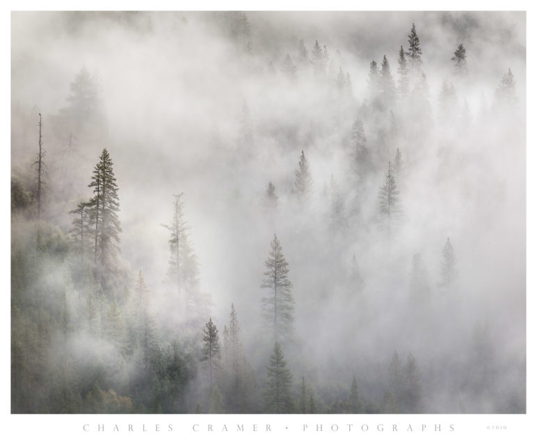 Afternoon Fog, Tunnel View, Yosemite