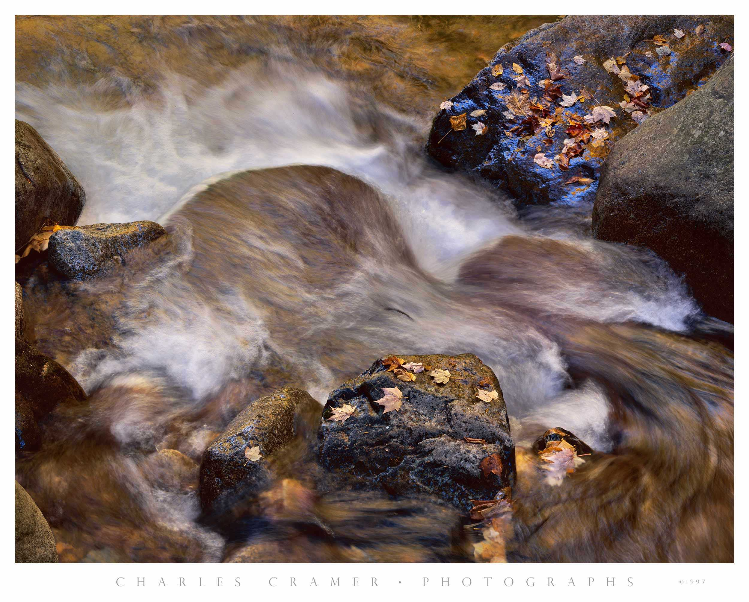 Creek and Leaves, Autumn, White Mountains, NH