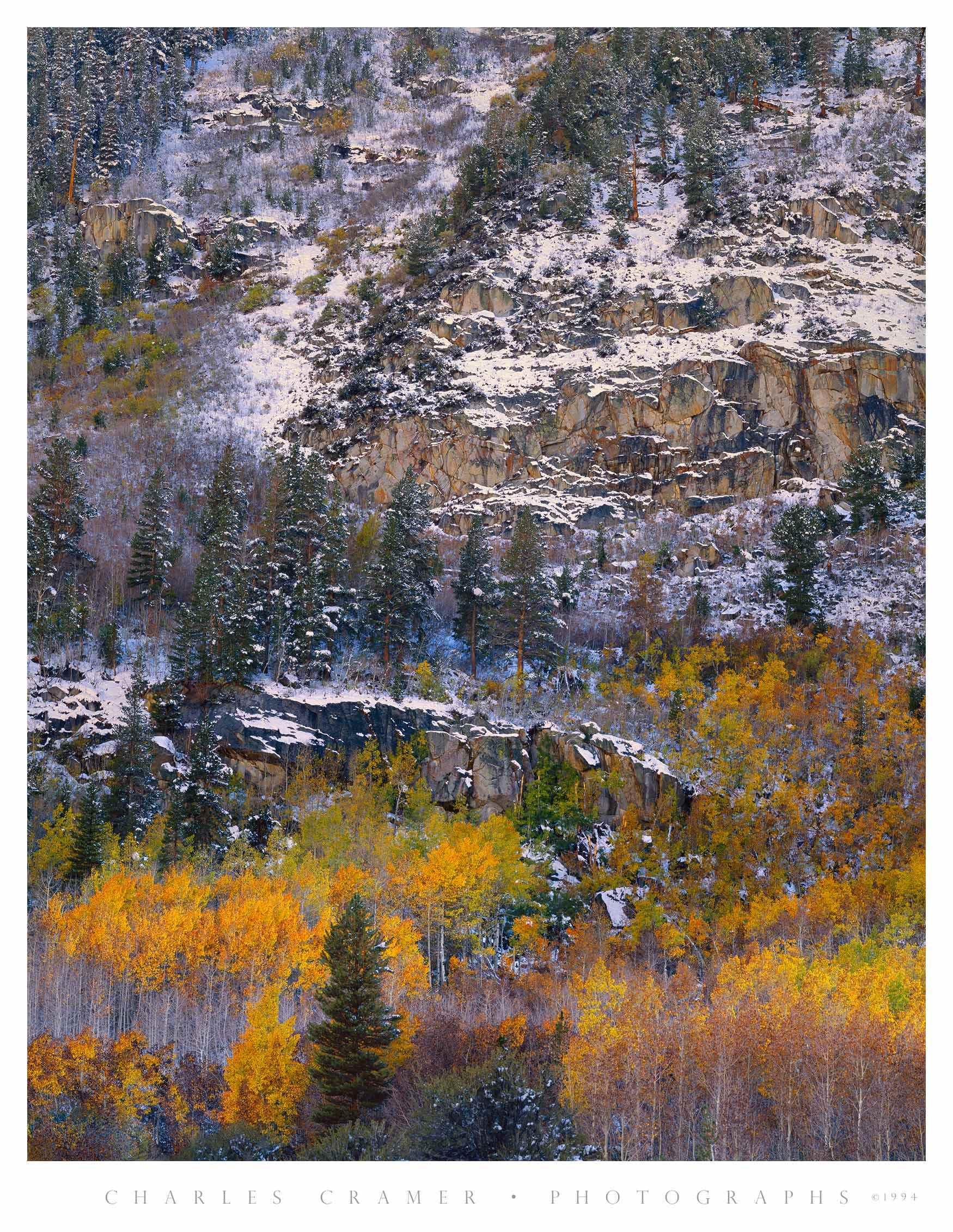 Autumn Snow, near South Lake, Eastern Sierra