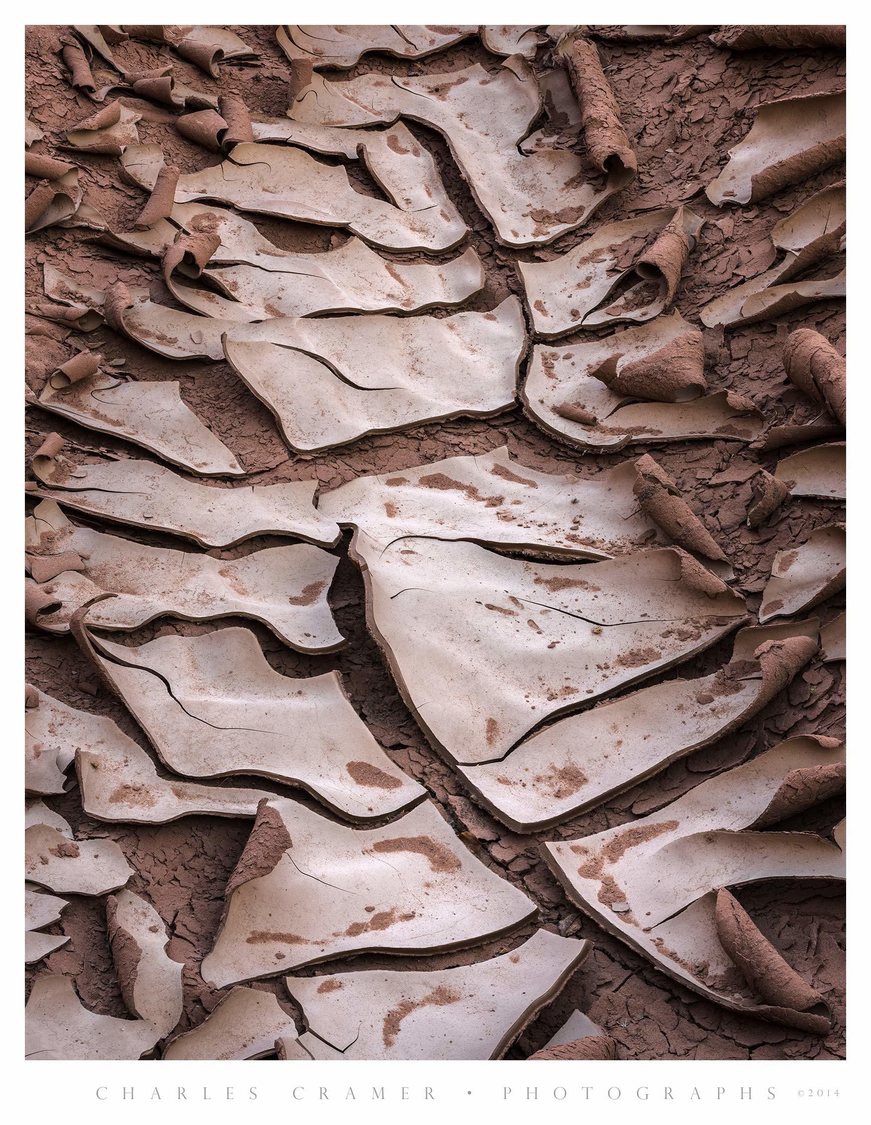 Dried Mud, Sooner Wash, Utah