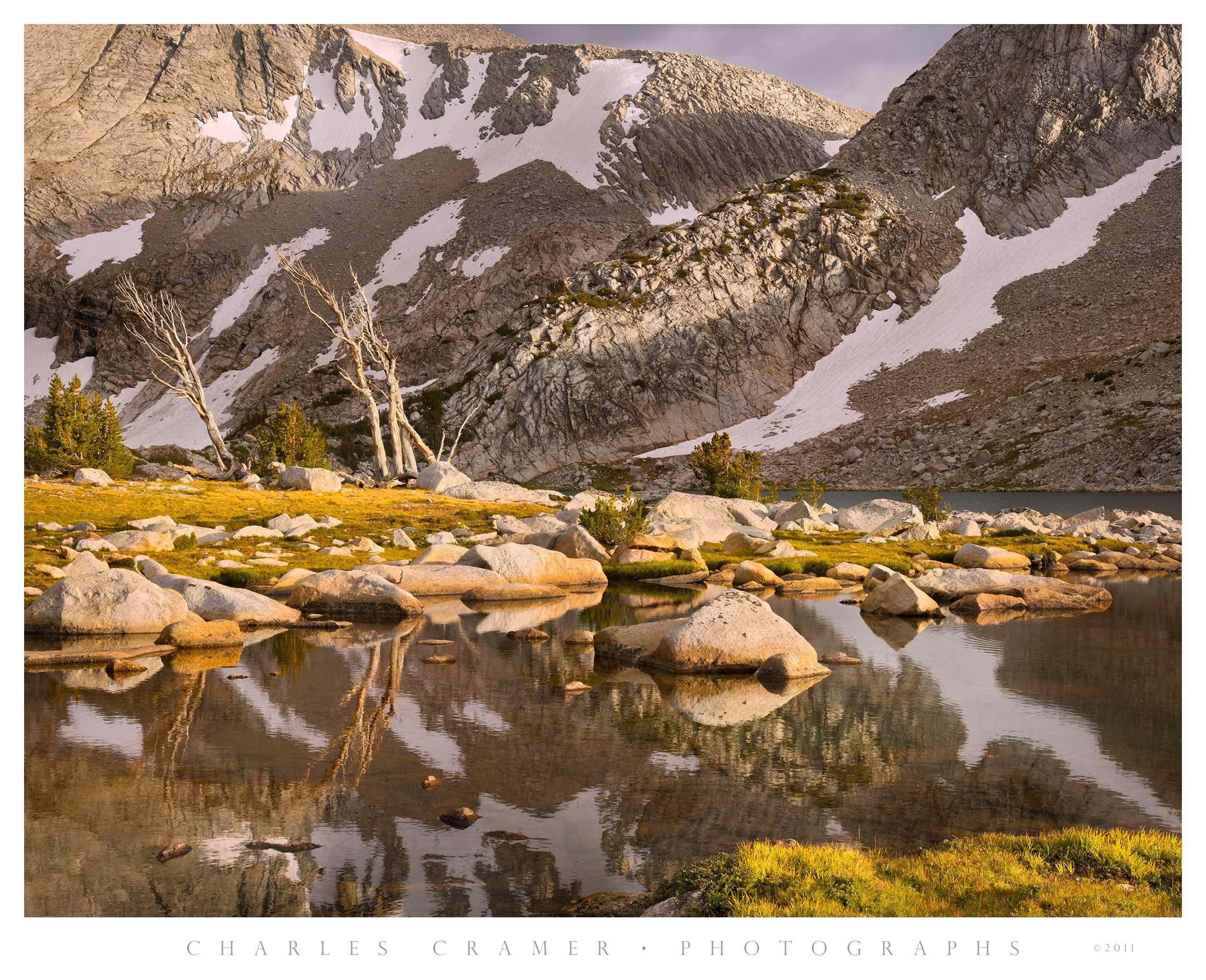 Snags and Shoreline, Upper McCabe Lakes, Yosemite